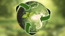 Ekologické regály bez plastov
