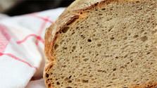 В Старой Любовне проложили маршрут «От зернышка – к хлебу»