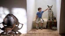 Na obrazovkách RTVS začína boj s pašovaním exotických zvierat