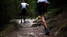 Karpaty run