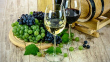 Malokarpatská vínna cesta otvára pivnice