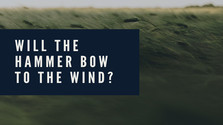 WILL THE HAMMER BOW TO THE WIND? - Rezidenční umelci Rádia Devín