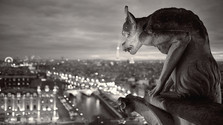 Fenomény: Paríž