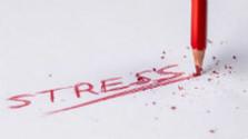 Osteokalcín a stres