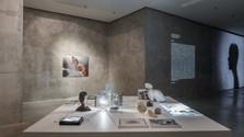 Výstava Torzo- laboratórium večných návratov
