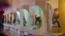 Vlastivedné múzeum v Hlohovci odhalilo nevšedné preparáty