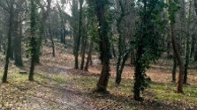 Park v Mojmírovciach