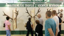 V Nitre sa začína výstava Včelárstvo, poľovníctvo, rybárstvo