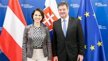 Rencontre des ministres des Affaires étrangères autrichienne et slovaque