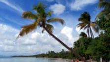 Martinik – čarovná príroda a pláže na karibskom ostrove