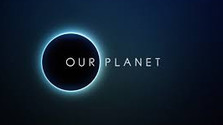 Miniprofil: Our Planet