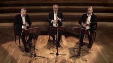 Koncert Lotz Trio