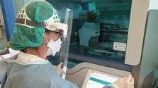 Словацкий штамм коронавируса поможет при тестировании вакцины
