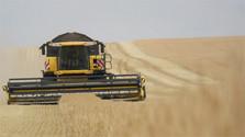 Poľnohospodárske práce