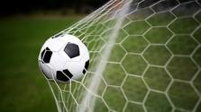 Futbalová lopta v bránke
