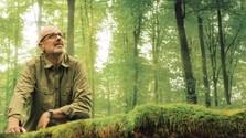 Peter Wohlleben: Tajomné puto medzi človekom a prírodou