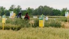 Ekologické ciele pre poľnohospodárstvo