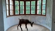 "Neue Ausstellung ""Artrooms"" im Schloss Moravany nad Váhom"