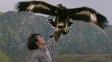 Králi hôr, film