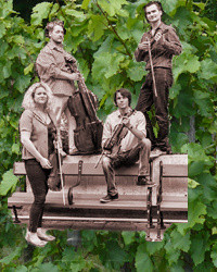 Mucha quartet cyklus koncertov