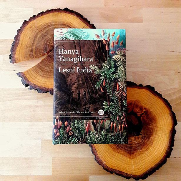 Výsledok vyhľadávania obrázkov pre dopyt lesní ľudia