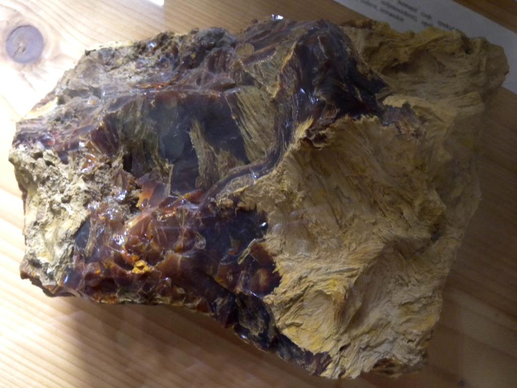 drevný opál - prekremenené drevo