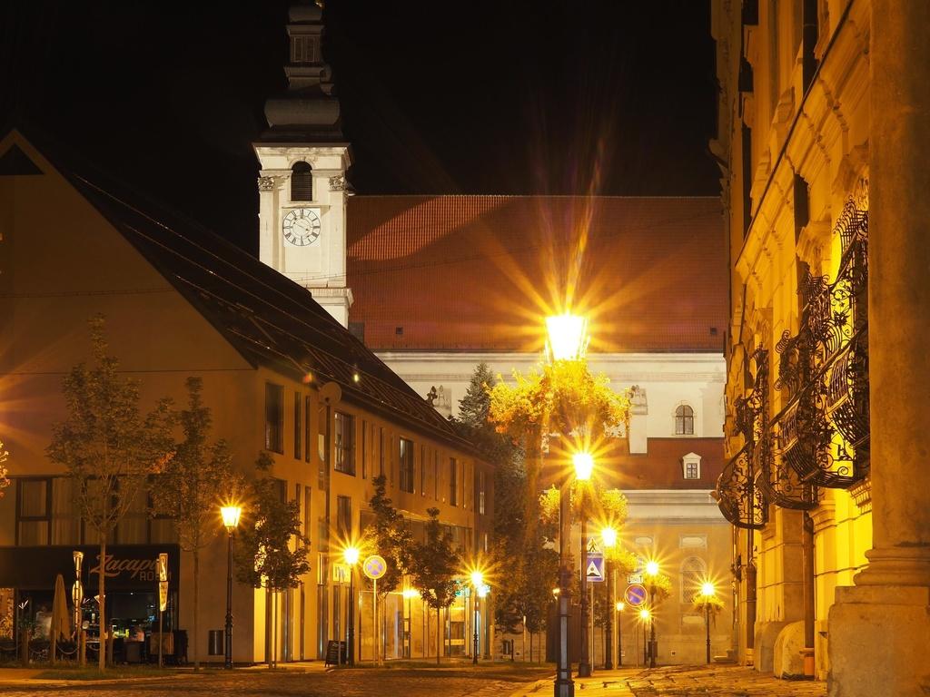 Hollého ulica a katedrálny Chrám sv. Jána Krstiteľa, Trnava
