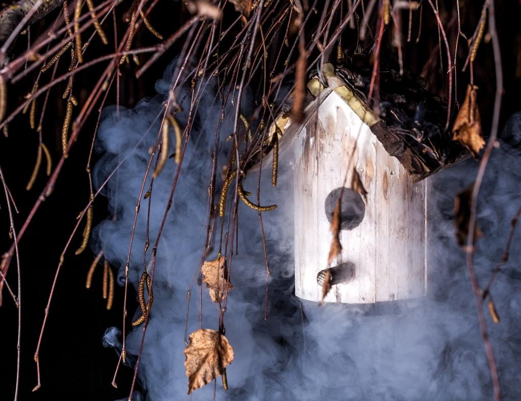 kŕmidlo pre vtáky v zasneženom lese