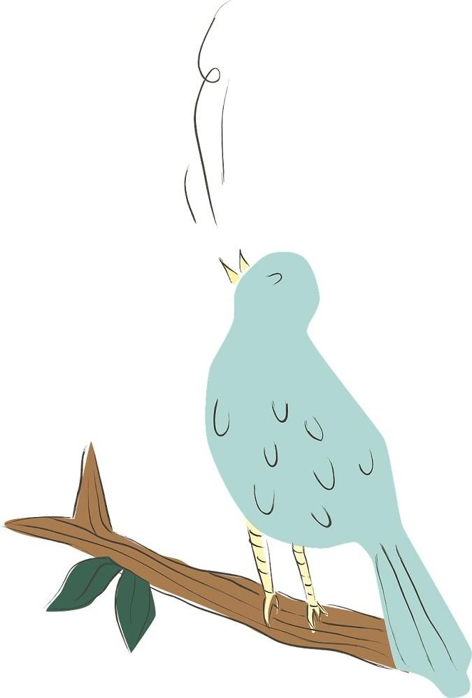 NicePng_parrot-clipart-png_3609053 mensi.jpg